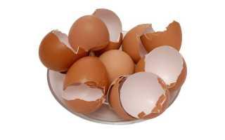 Полезные свойства яичной скорлупы и как они помогут в ведении хозяйства