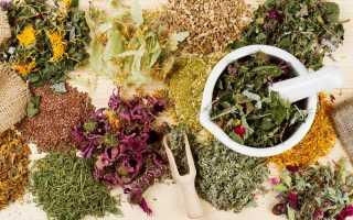 8 оттенков фиолетового: удивительное сочетание красоты и аромата в пряных растениях