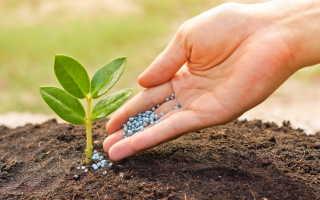 Свойства главных минеральных азотных удобрений