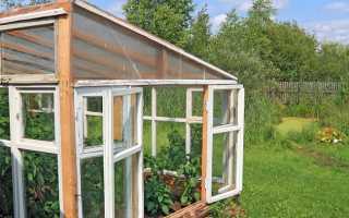 Теплица на садовом участке: правильная подготовка к зиме