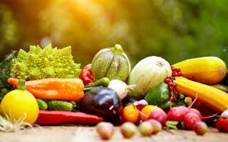 Эффективные советы для повышения урожая