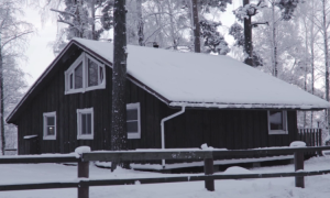 Зимние работы на даче: 10 советов