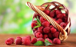 Подкормки для малины, которые обеспечат богатый урожай