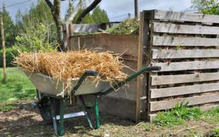 Основные правила компостирования: что можно закладывать в яму, а что нельзя