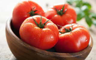 Посадка помидоров по методике Митлайдера