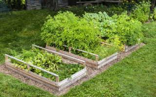 Из чего можно сделать высокие грядки для выращивания овощей: 11 рабочих вариантов