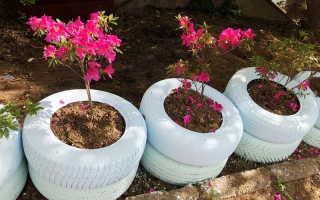 Садовые вазоны и кашпо из подручных материалов: оригинальные варианты