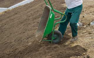 Повышаем плодородность глинистой или суглинистой почвы