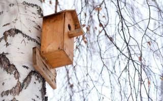 Классика рубрики «своими руками»: делаем скворечники из дерева