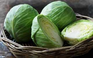 В какие сроки убирают поздние сорта белокочанной капусты