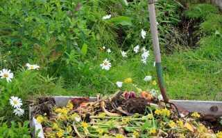 Мои незаменимые помощники — 5 наиболее эффективных средств для получения компоста