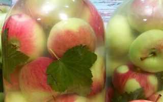 Моченые яблоки в медовом маринаде