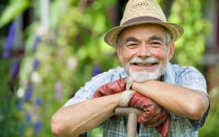 Искореняющая обработка — главное мероприятие в моем осеннем саду. Как я избавляюсь от болезней и вредителей