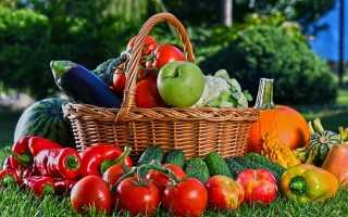 Особенности нового закона о садовых и огороднических товариществах