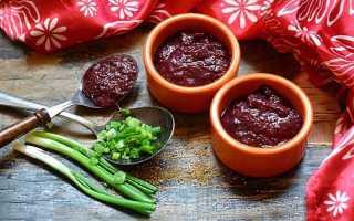 Ткемали из сливы на зиму – классические и оригинальные рецепты