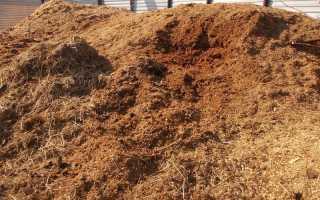 Конский навоз: применение, приготовление компостной ямы