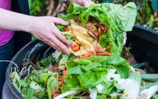 Как поступать с растительными остатками на огородном участке