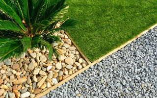 9 советов начинающему огороднику