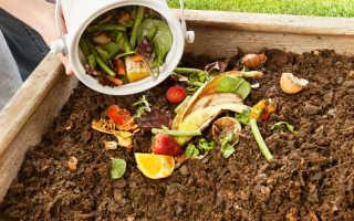 Все о компосте: этапы формирования, виды и приготовление