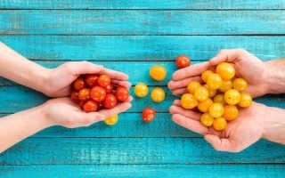 Лучшие сорта томатов для выращивания на балконе