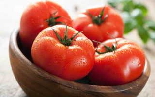 Самые популярные сорта лежких томатов