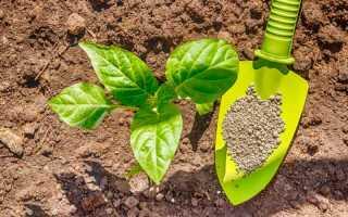 Удобрения: основные элементы питания растений
