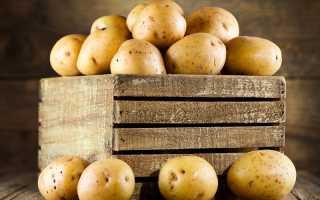Картофель Гала: описание, преимущества и недостатки