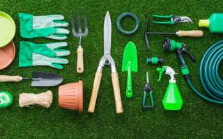 5 инструментов для цветовода. Покупать или нет?