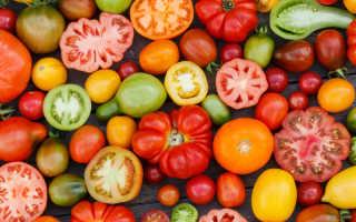 Секрет хорошего урожая томатов — что обязательно нужно сделать с ними в июле