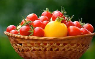 5 распространенных сортов лежких томатов