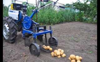 Стоит ли самостоятельно изготавливать картофелекопалку