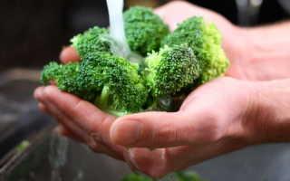 Капуста брокколи — кладезь витаминов: выращивание и уход