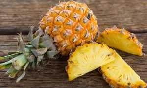 Как правильно посадить ананас в домашних условиях