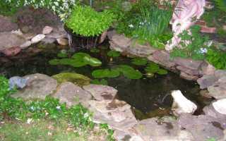 Искусственный водоем своими руками: пруд из старой ванны