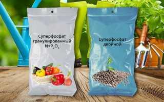 Суперфосфат – универсальное и эффективное удобрение