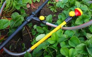 Летний водопровод для дачи: виды конструкций и советы