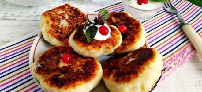Вкусные пышные сырники: рецепт. Сырники из творога — как в детском саду