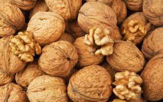 Грецкий орех: история, полезные свойства, посадка