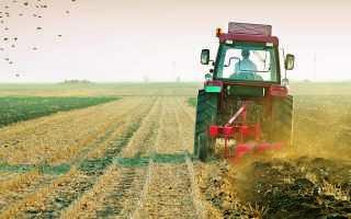 Земли сельскохозяйственного назначения: виды и использование