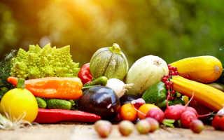 Хранение овощей и фруктов. Для чего нужна калибровка