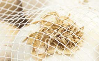 Правильное хранение чеснока, как избавиться от болезней и гниения