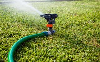 Чем опасен мох на газоне и как от него избавиться